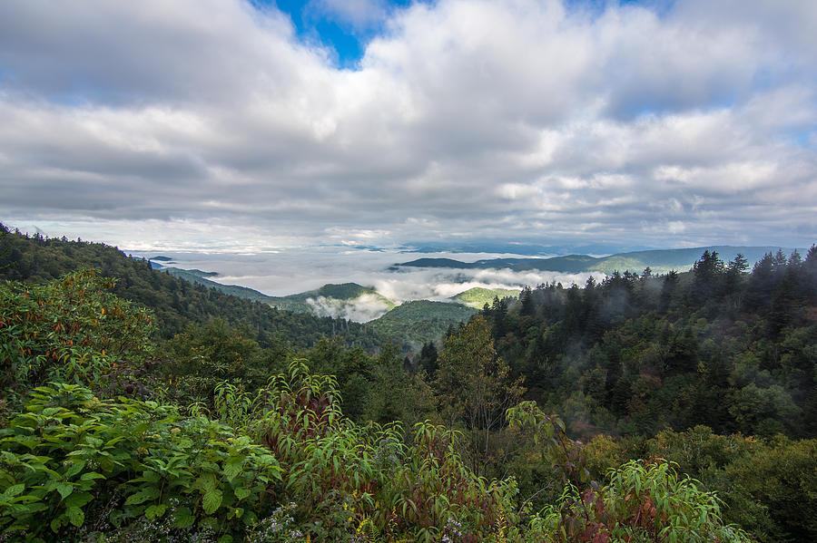Mountain Fog by Francis Trudeau