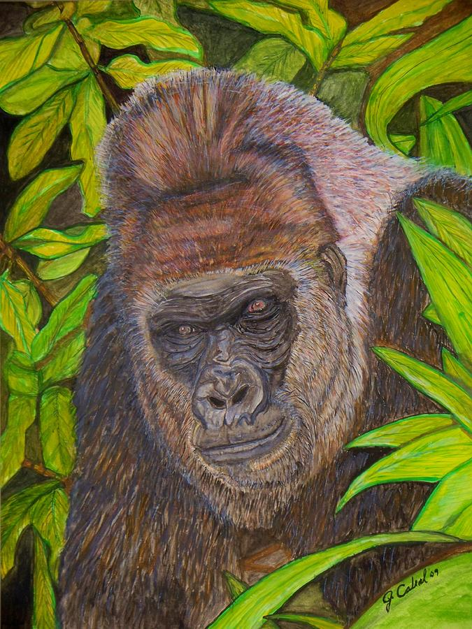 Mountain Gorilla In Jungle Canopy Painting By Jose Cabral