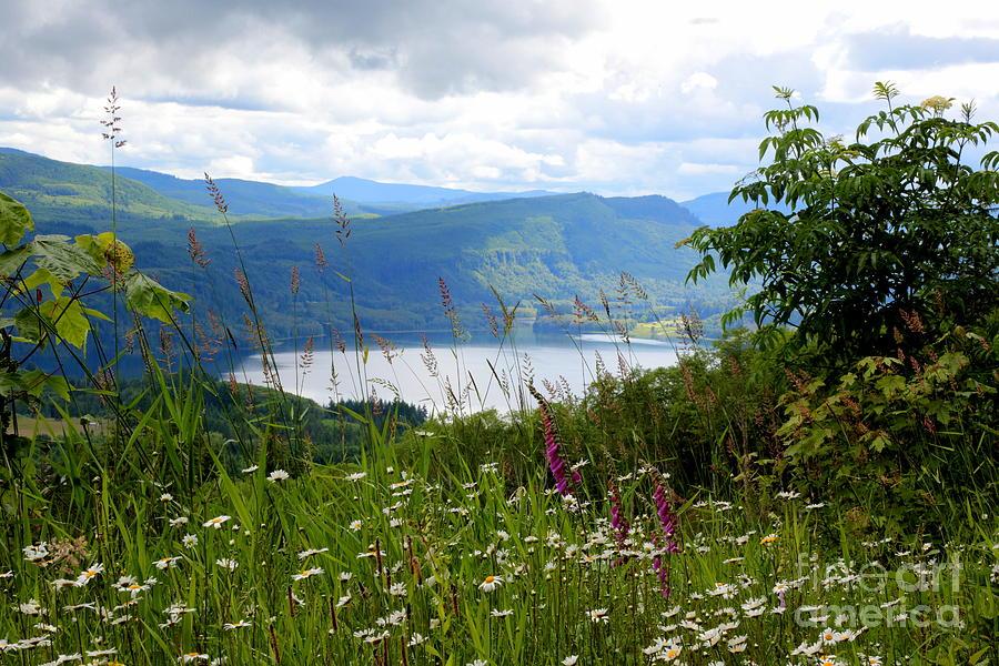 Lake Photograph - Mountain Lake Viewpoint by Carol Groenen
