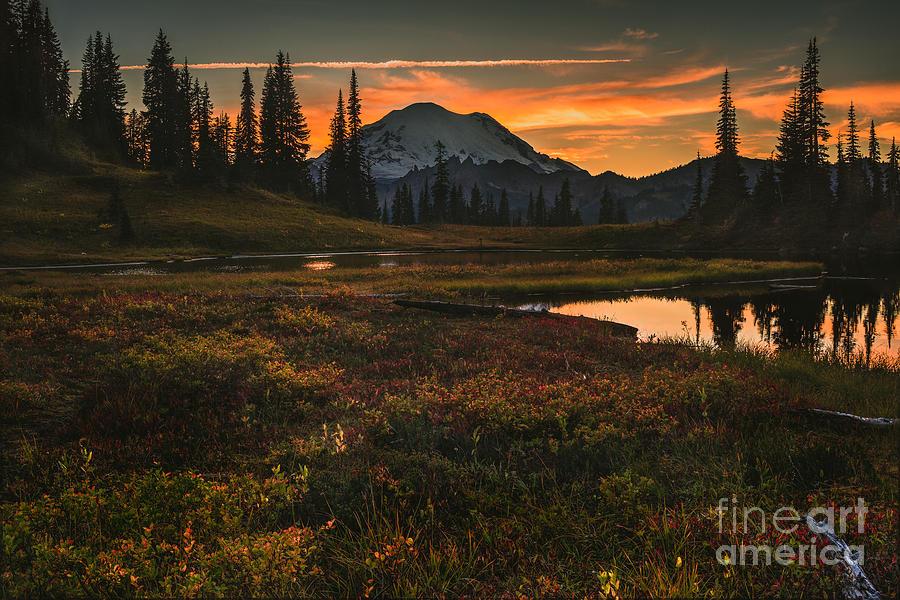 Mt. Rainier Photograph - Mountain Light by Gene Garnace