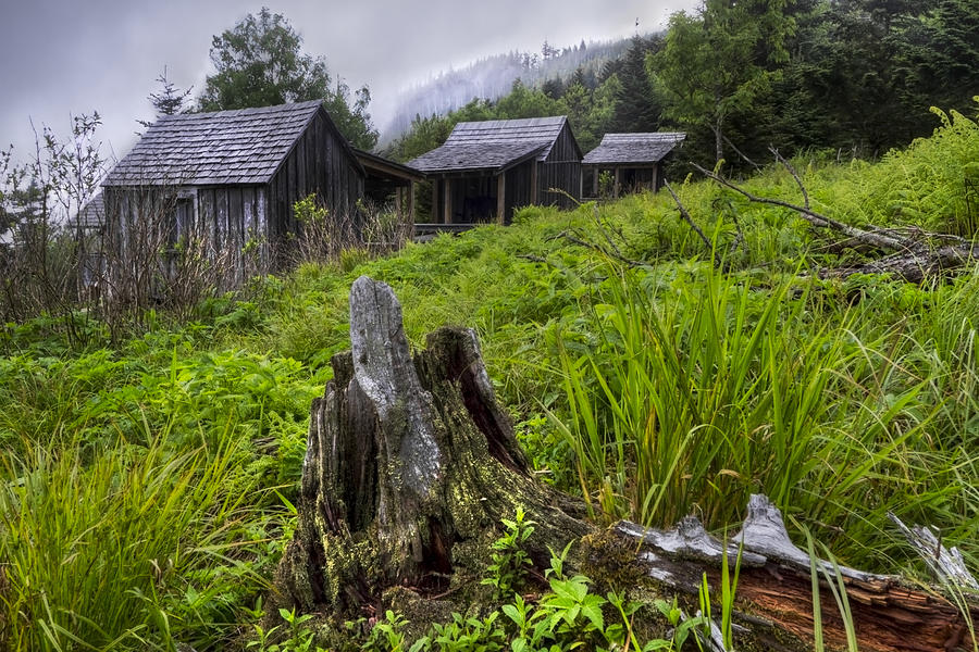 Appalachia Photograph - Mountain Mists At Le Conte by Debra and Dave Vanderlaan