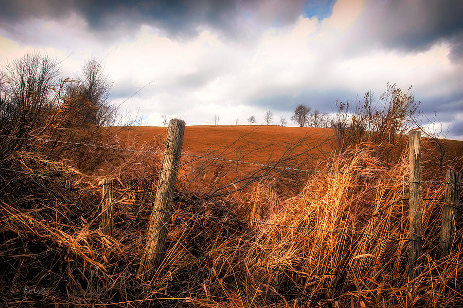 Landscape Photograph - Mountain Pasture by Bob Orsillo