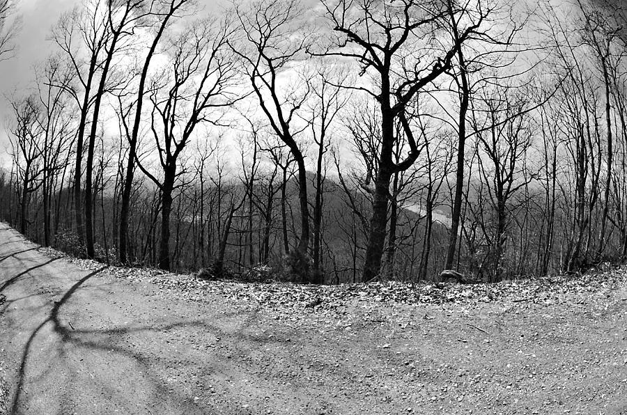 Rural Photograph - Mountain Road by Susan Leggett