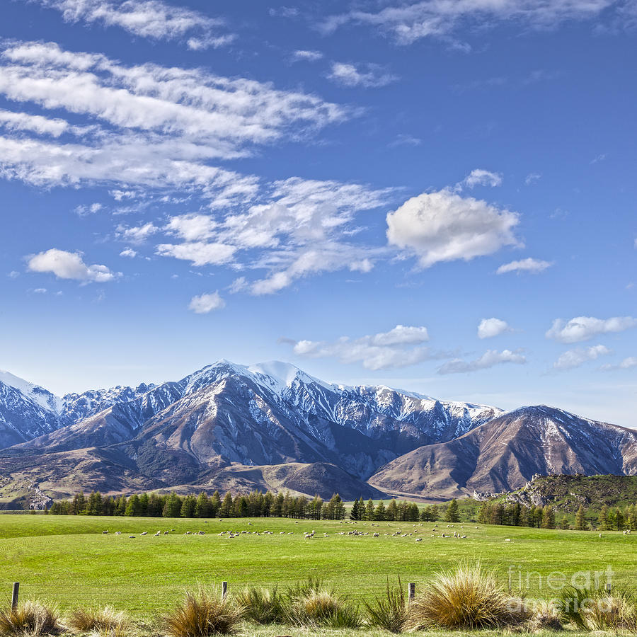 Mountain Scenery Canterbury New Zealand Photograph By