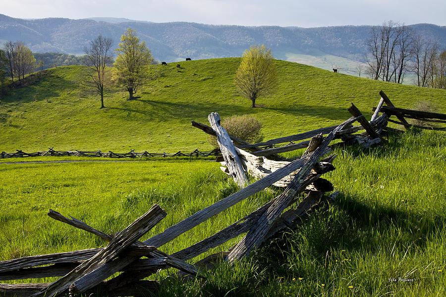 Mountain Spring by John Pagliuca