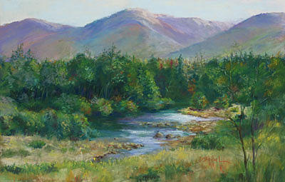 Water Painting - Mountain Stream by Barbara Seibel