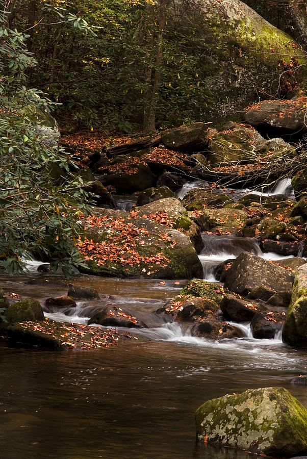 South Carolina Photograph - Mountain Stream by Cindy Rubin