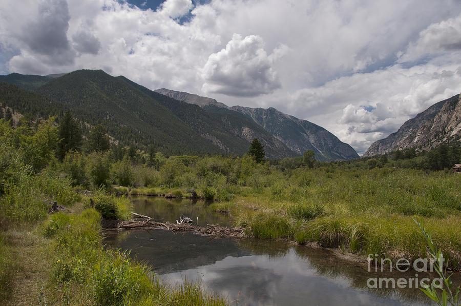 Beaver Dam Photograph - Mountain Stream by David Arment