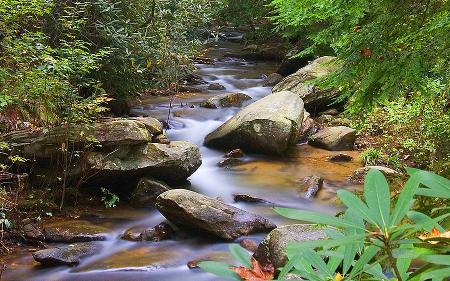 Landscape Photograph - Mountain Stream by David Palmer