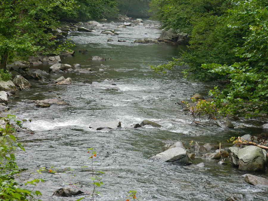 Stream Photograph - Mountain Stream by Linda Brown