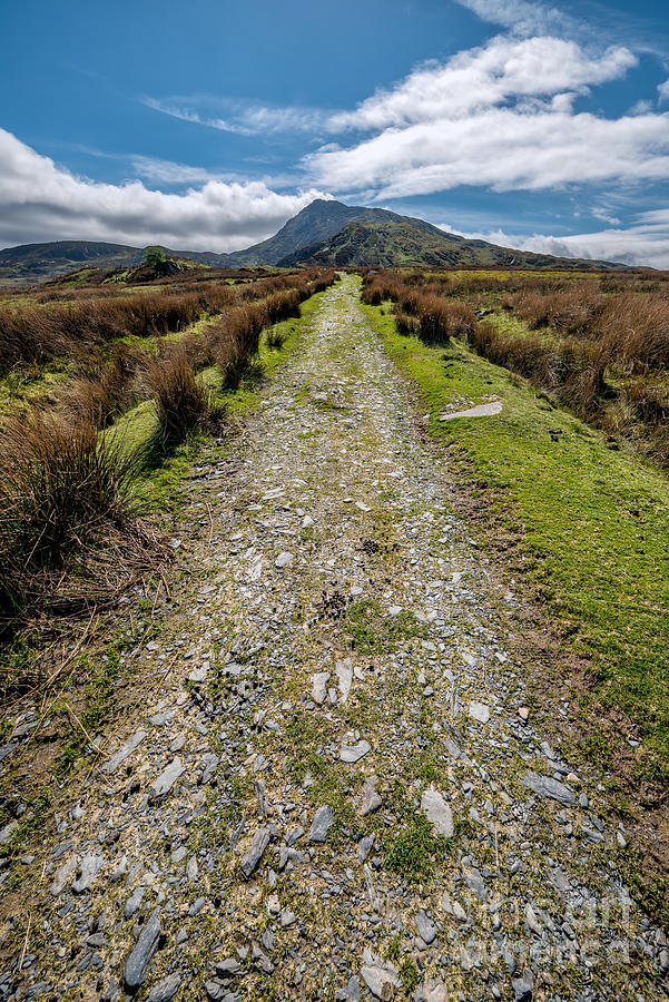 Capel Curig Photograph - Mountain Track by Adrian Evans