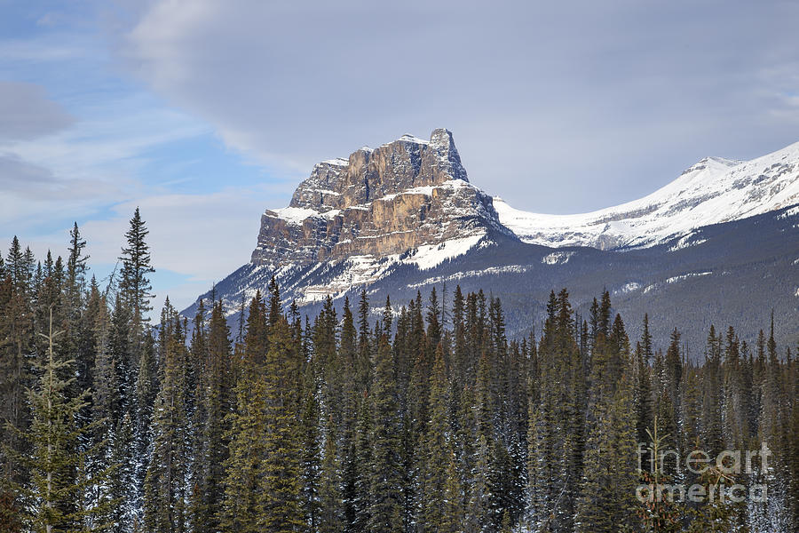 Banff Photograph - Mountain View by Evelina Kremsdorf
