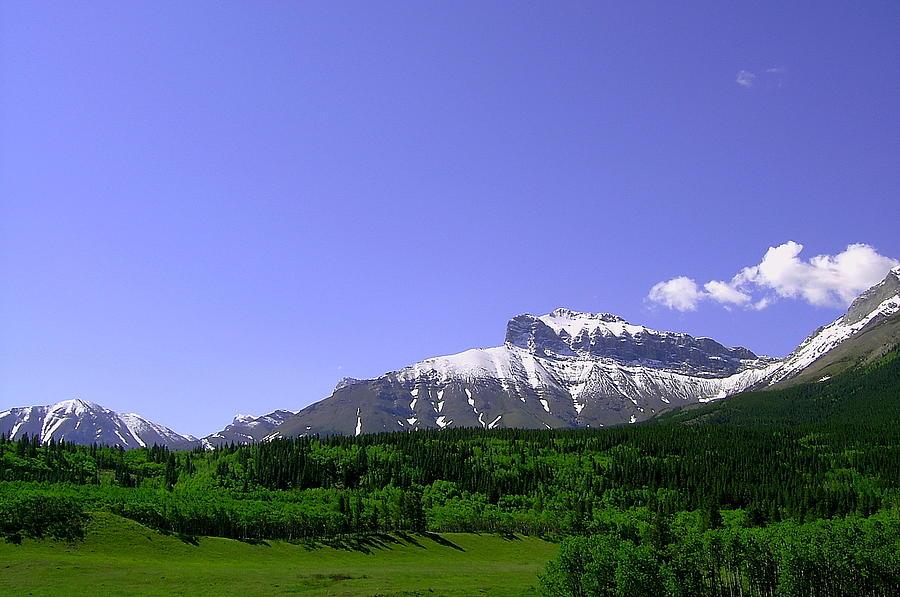 Mountain Photograph - Mountains Crowsnest by Mavis Reid Nugent