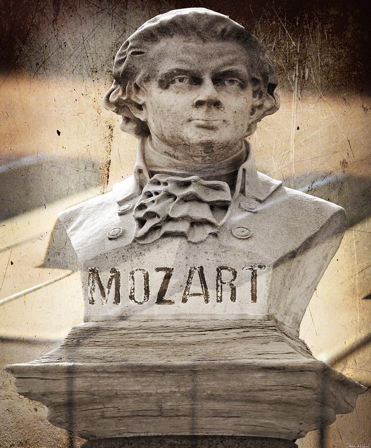 Mozart Photograph - Mozart by Steven Michael