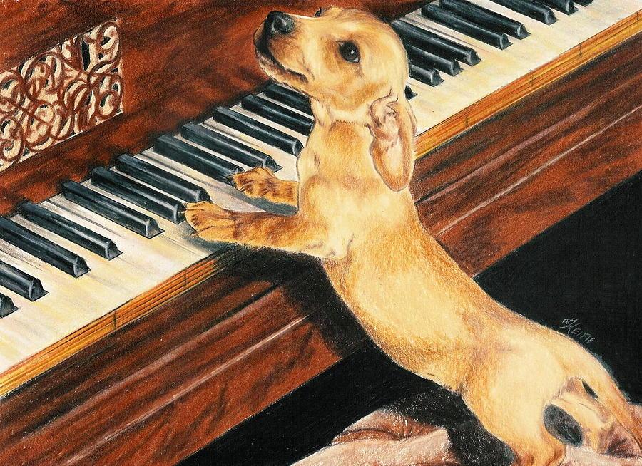 Purebred Dog Drawing - Mozarts Apprentice by Barbara Keith