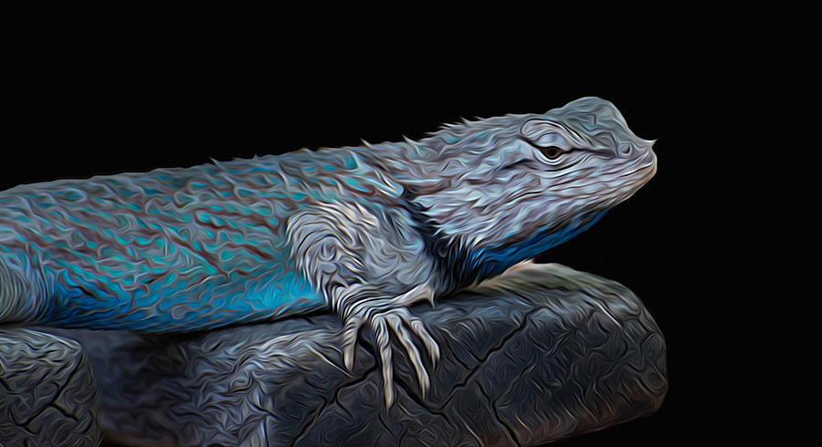 Animal Photograph - Mr Blu by Michael Moriarty