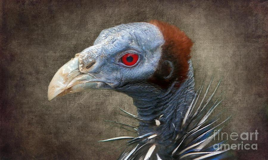 Vulturine Digital Art - Mr. Burns by Angela Doelling AD DESIGN Photo and PhotoArt