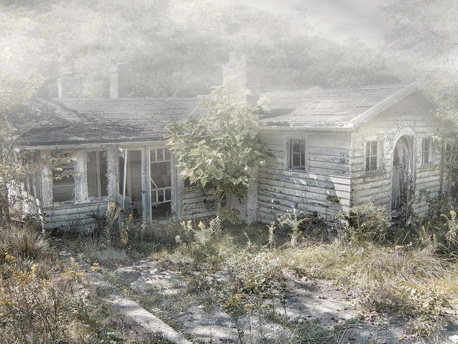 Fog Photograph - Mr Crowleys by Mark Dottle