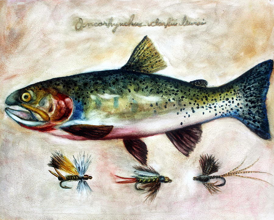 Trout Painting - Mr. Cuttie by Mary C Farrenkopf