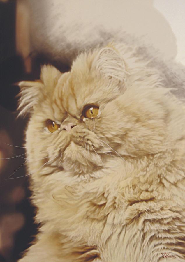 Cat Painting - Mr. Elliot by Alberto Ponno
