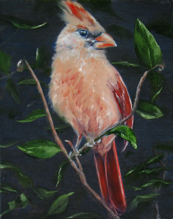 Bird Painting - Mrs. C by Sherry Robinson