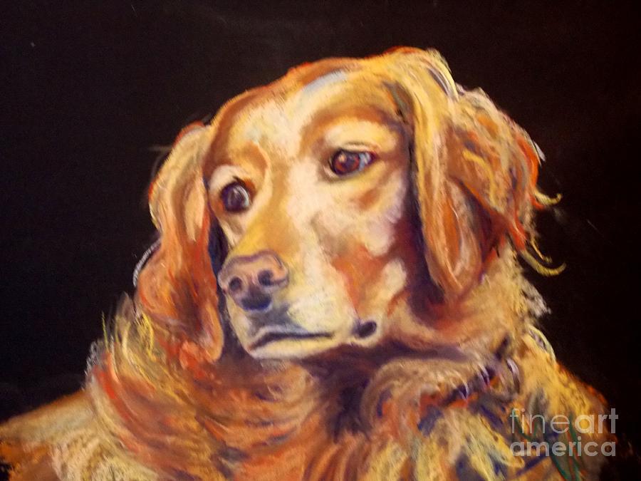 Golden Retriever Pastel - Mr.wilson Werth-johnson by Mindy Sue Werth