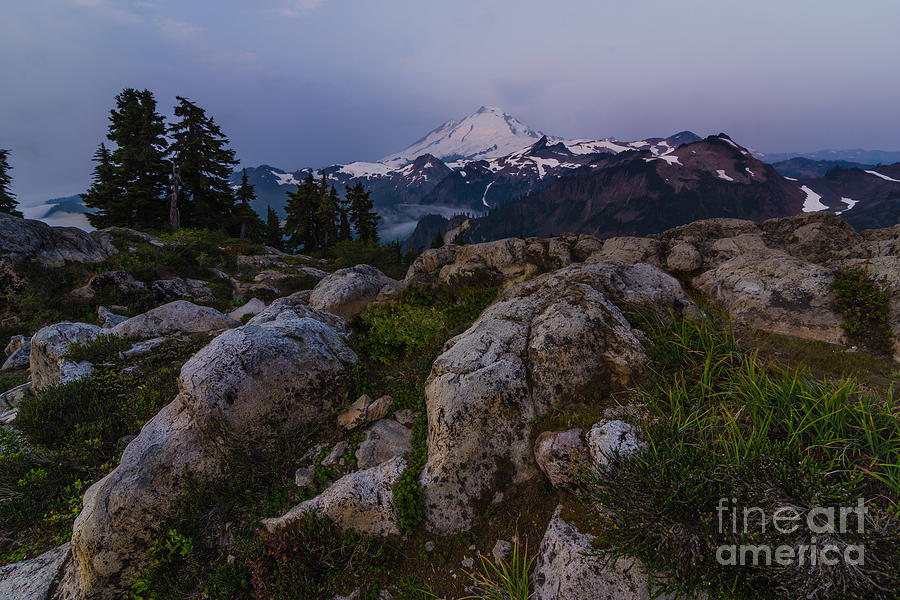 Mt Baker Photograph - Baker Dawn by Gene Garnace