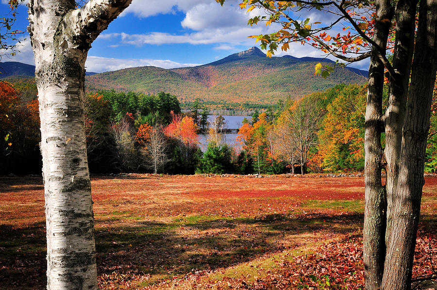 Mount Photograph - Mt Chocorua - A New Hampshire Scenic by Thomas Schoeller