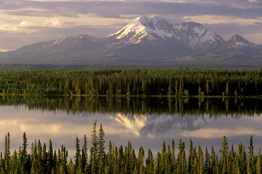 Alaska Photograph - Mt Drum Over Willow Lake Wrangell-st by Calvin Hall