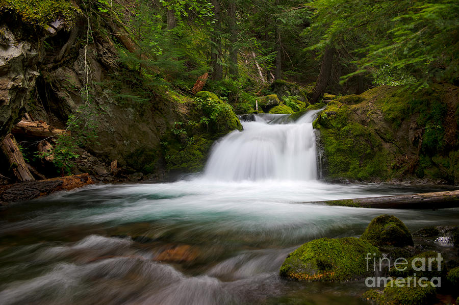 Rivers Photograph - Mt. Hood Cascade In Summer by Jackie Follett