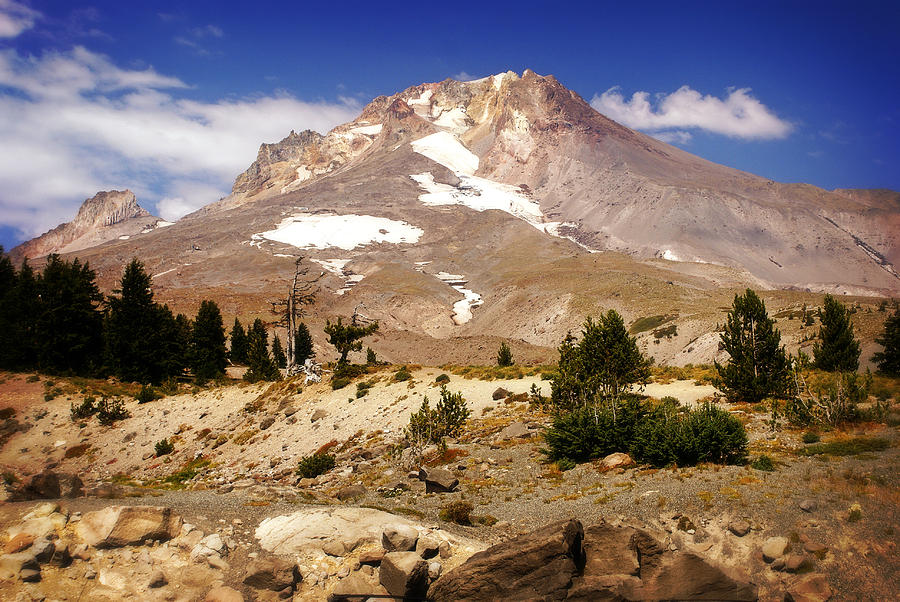 Mountains Photograph - Mt. Hood by Marty Koch