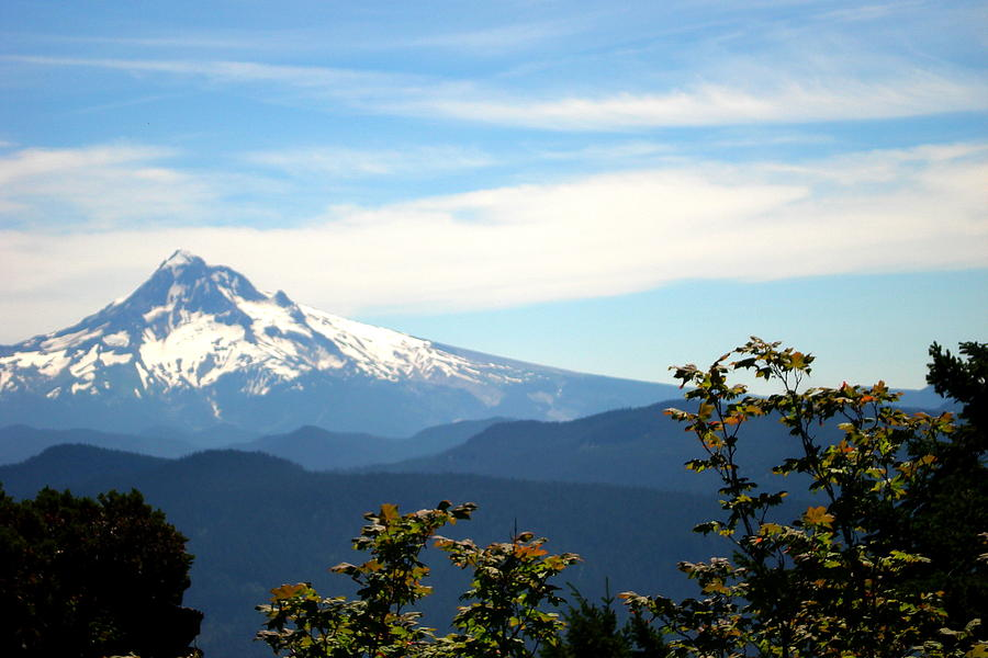 Sherrard Point Photograph - Mt. Hood View From Sherrard Point by Lizbeth Bostrom