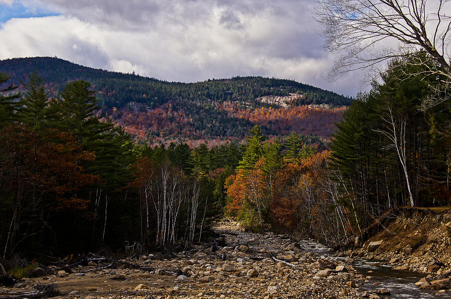 Dappled Photograph - Mt. Langdon On A Sunlit Afternoon by RockyBranch Dreams