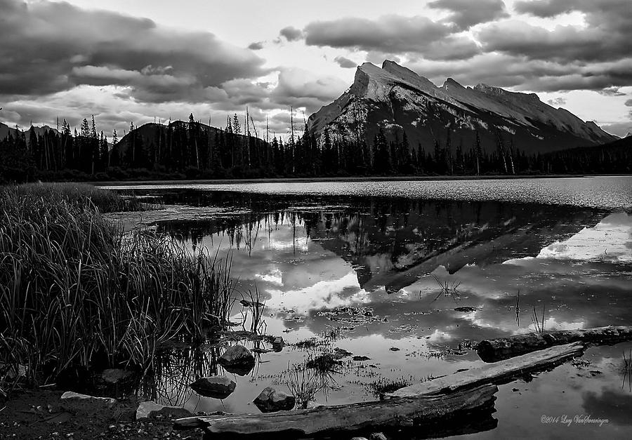 Reeds Photograph - Mt. Rundle Reflection by Lucy VanSwearingen