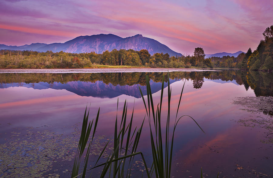 Mt. Si Photograph - Mt. Si Colors by Manju Shekhar