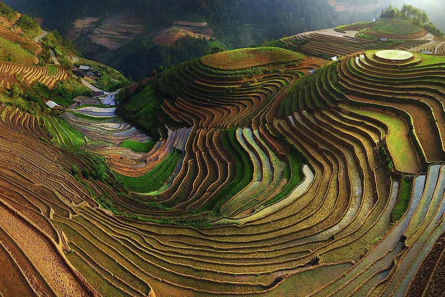 Terrace Photograph - Mu Cang Chai - Vietnam by ??o T?n Ph?t