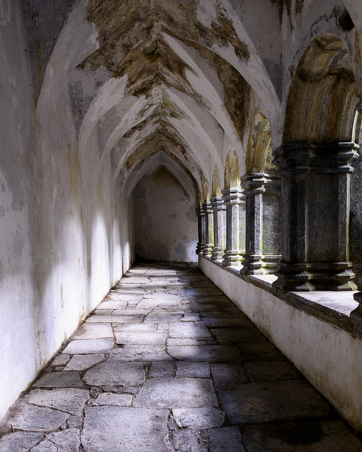 Abby Photograph - Muckross Abby Cloister Killarney  Ireland by Dick Wood