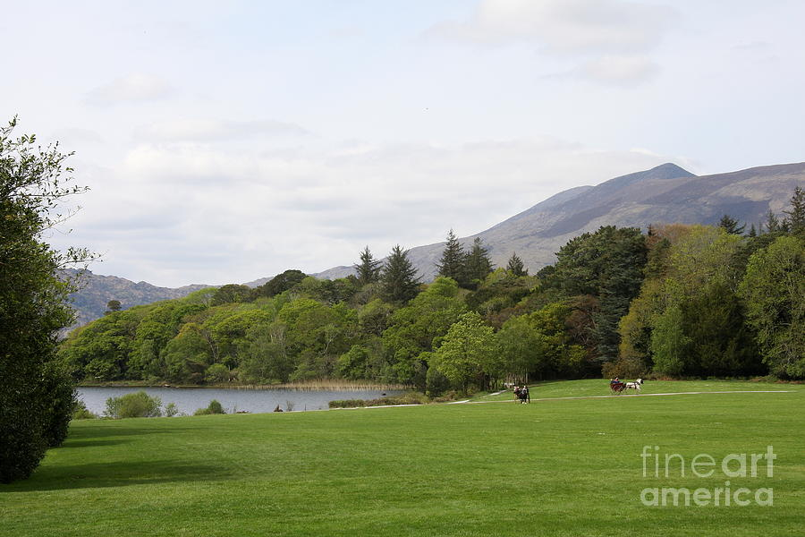 Lake Photograph - Muckross Lake And Garden by Christiane Schulze Art And Photography