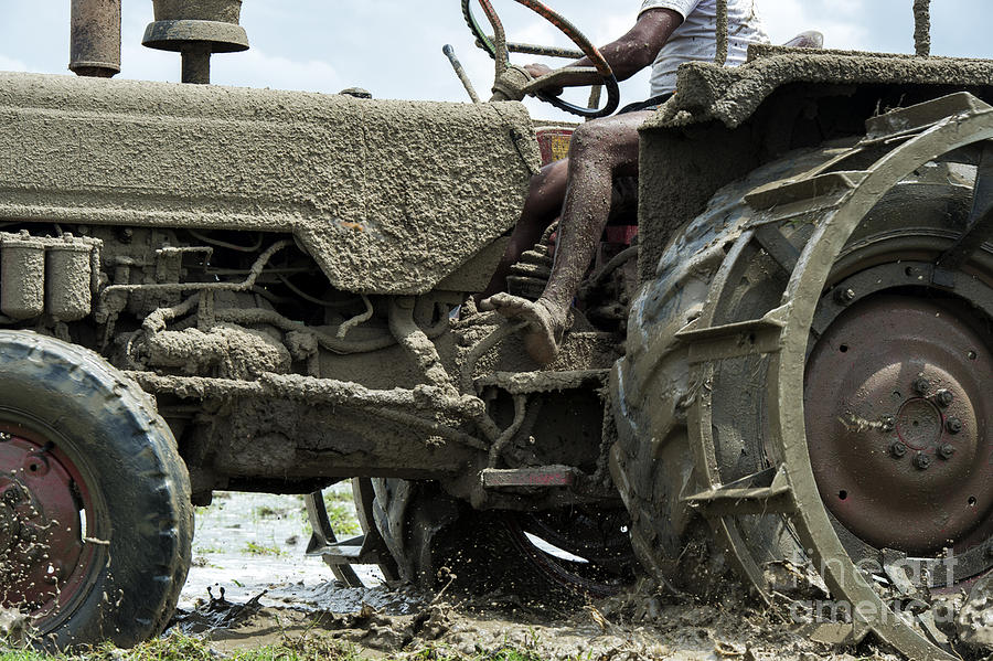 Indian Photograph - Mud by Tim Gainey