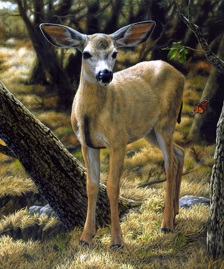Deer Painting - Mule Deer Fawn - Monarch Moment by Crista Forest