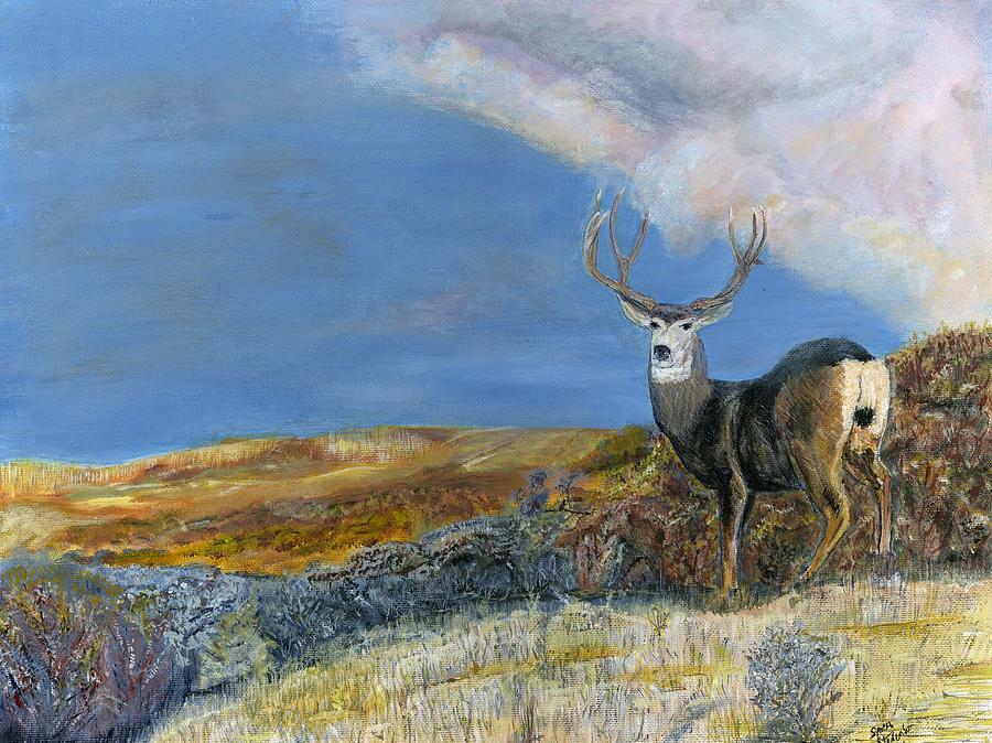 Mule Deer Painting - Mule Deer by Sara Stevenson