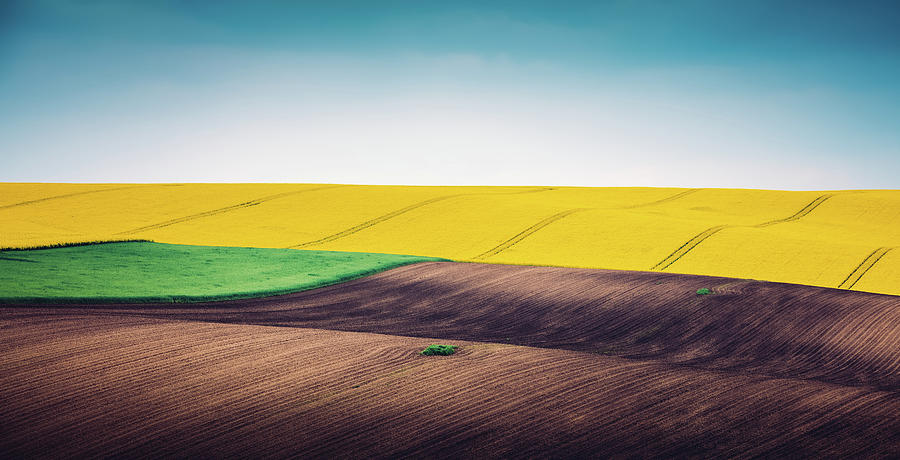 Multi Colored Panoramic Spring Field Photograph by Borchee