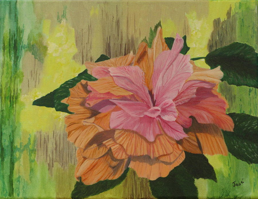 Hibiscus Painting - Multi-petaled Pink Peach Hibiscus by Hilda and Jose Garrancho