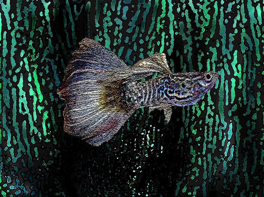 Fish Digital Art - Multicolored Tropical Fish In Digital Art by Mario Perez
