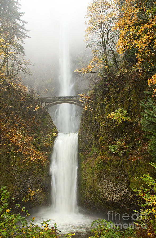 Multnomah Falls Photograph - Multnomah Autumn Mist by Mike  Dawson
