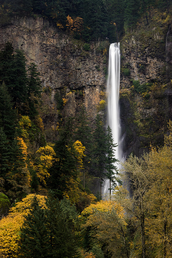 Columbia River Gorge Photograph - Multnomah Falls by Brian Bonham