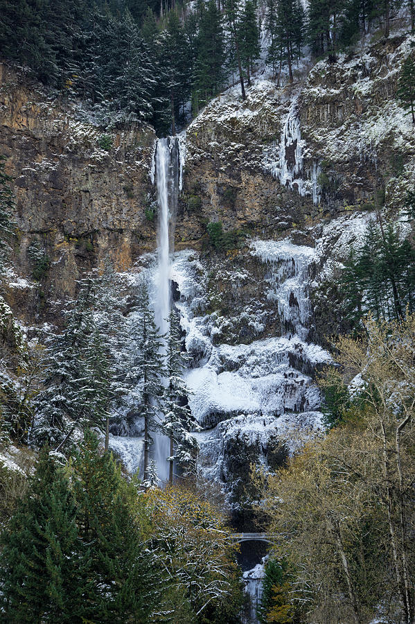 Columbia River Gorge Photograph - Multnomah Icicles by Brian Bonham
