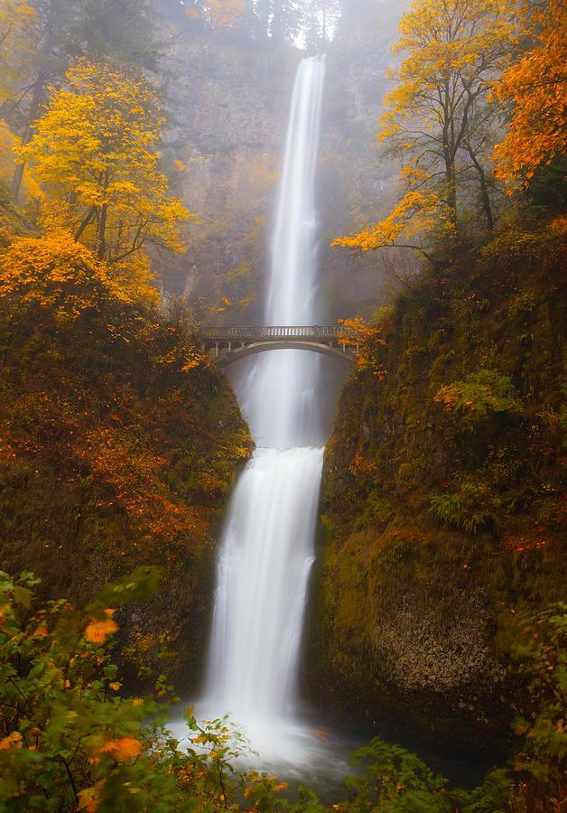 Multnomah Falls Photograph - Multnomah Morning by Darren  White