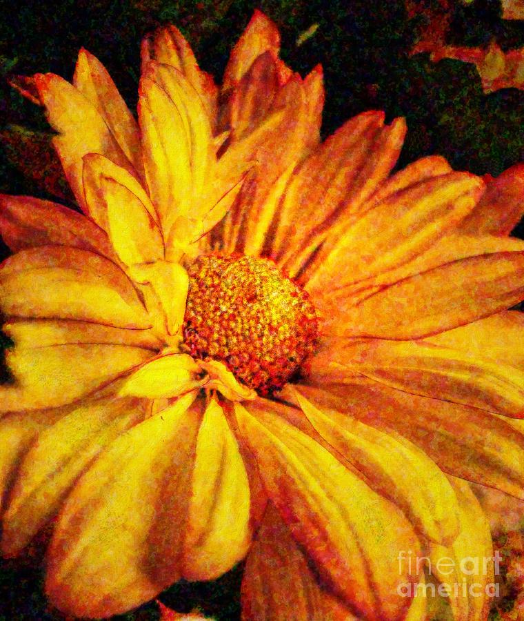 Flower Digital Art - Mums Mum by Lianne Schneider