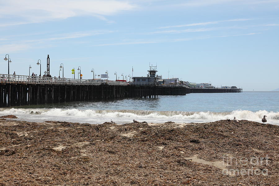 California Photograph - Municipal Wharf At The Santa Cruz Beach Boardwalk California 5d23769 by Wingsdomain Art and Photography